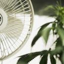 Het Belang Van Ventilatie Bij Het Kweken Van Cannabis