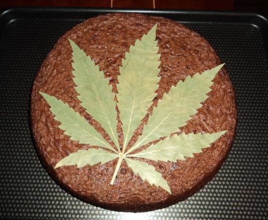 Cannabis Spacecake