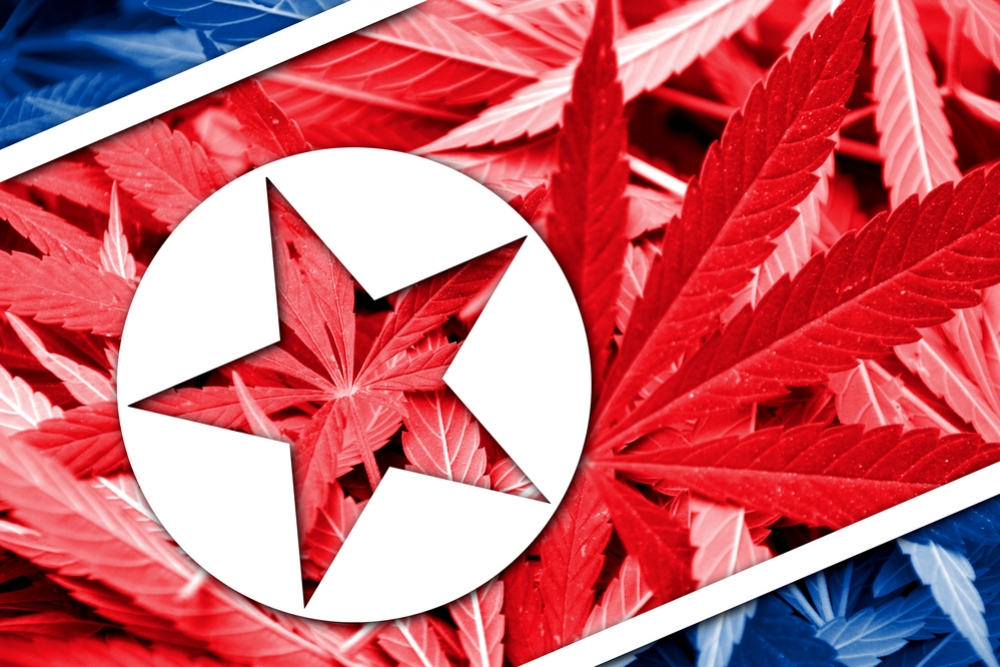 Cannabis in Noord-Korea