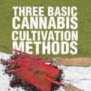 Drie Basis Cannabis Kweekmethoden