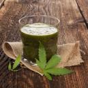 Voordelen Van Het Juicen Van Rauwe Cannabis