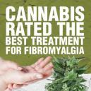 Cannabis beoordeeld als beste behandeling voor Fibromyalgie