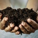 Zelfgemaakt Biologische Meststoffen: Hoe Maak Je Dat?