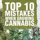 Top 10 gemaakte fouten bij het kweken van cannabis en hoe ze