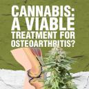 Cannabis : Een haalbare behandeling voor artrose?
