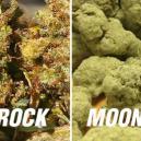 Moonrocks Vs Sunrocks - Te Krachtig?