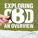 CBD ontdekken: Een overzicht