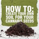 Hoe maakt u uw eigen voedingsbodem voor cannabiszaden?