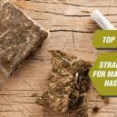 Top 5 soorten om hasj te maken