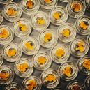 Hoe Werkt Decarboxylatie Van Cannabis?